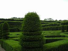 Сад Екатерины Медичи