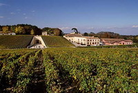 Район виноделия Медок